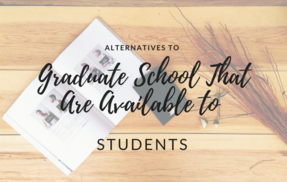 Alternatives to Graduate School That Are Available to Students